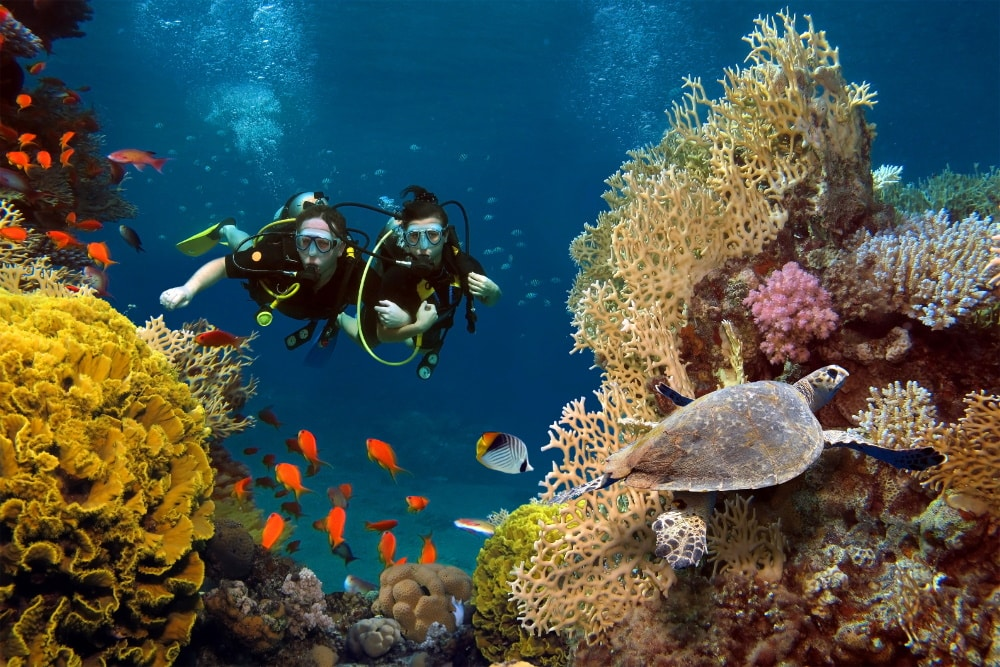 what-is-scuba-diving-locations